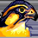 hammouda avatar